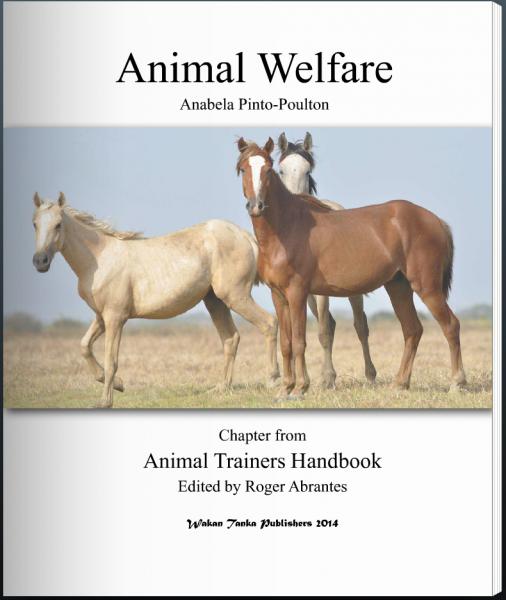 """Animal Welfare"" by Anabela Pinto-Poulton"