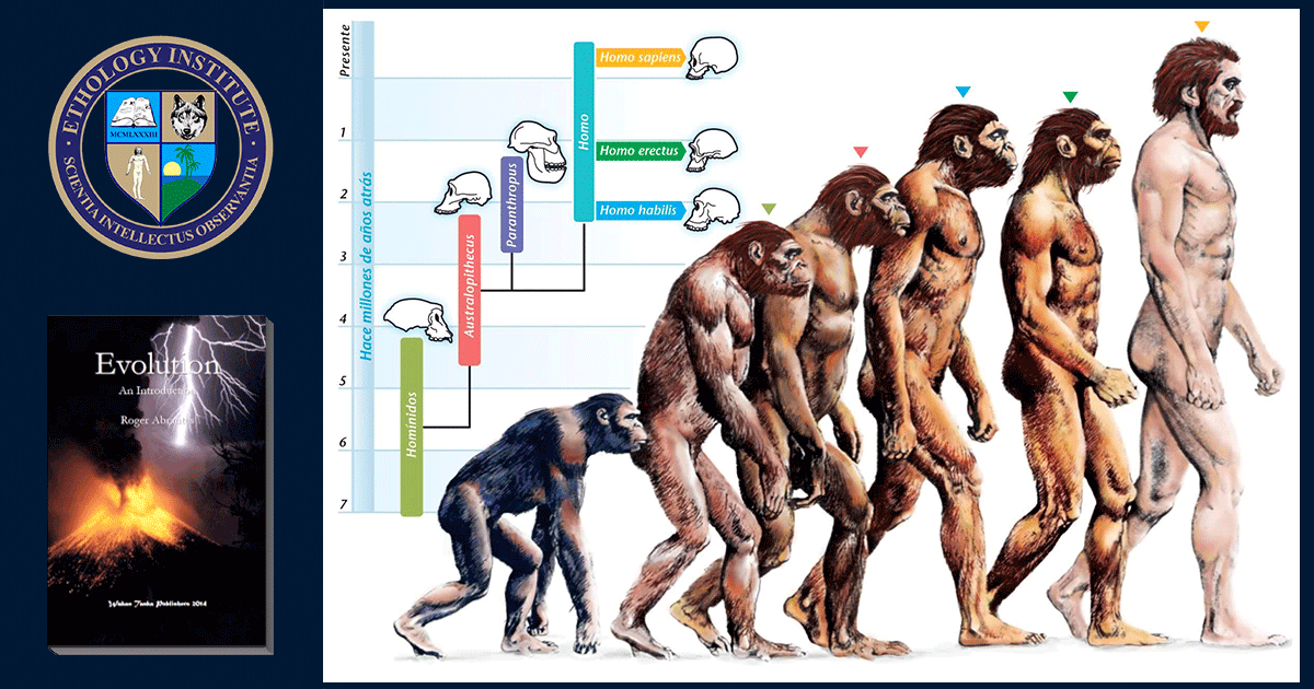 Evolution Course