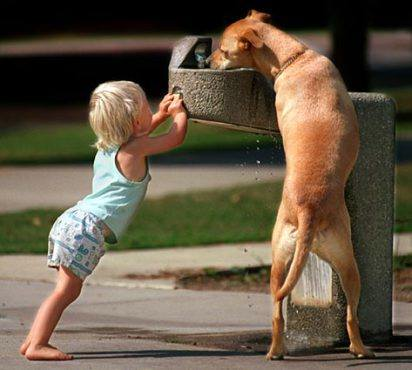 Child Helps Dog.