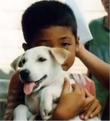 thaiboydog