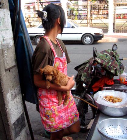 womandogthaistreetfood