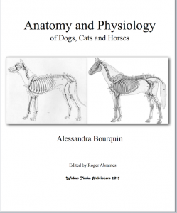 Anatomy And Physiology Cover