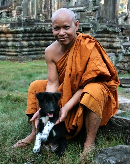 Buddhist Monk and his Dog at Bayon, Angkor Images
