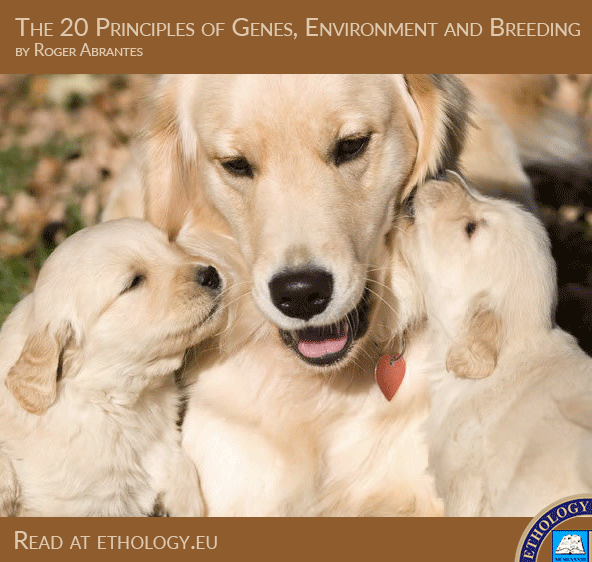 The 20 Principles of Genes, Environment and Breeding