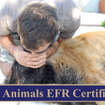 Animals EFR Certified
