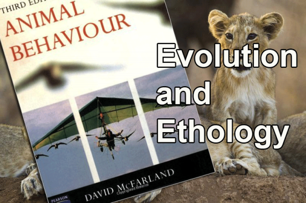 Evolution And Ethology