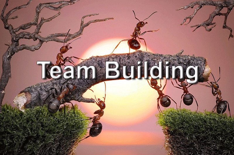 Team Building Course