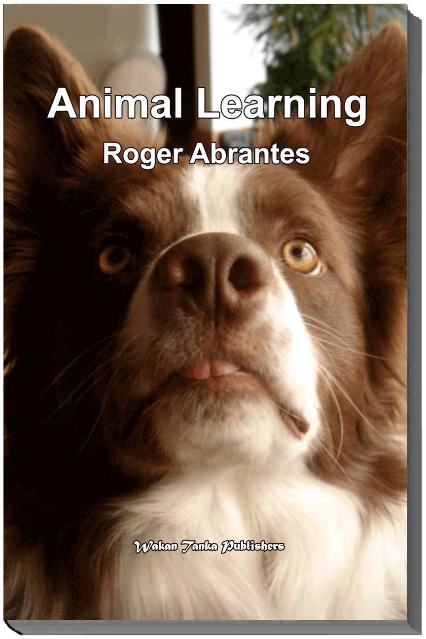 """""""Animal Learning"""" by Roger Abrantes."""