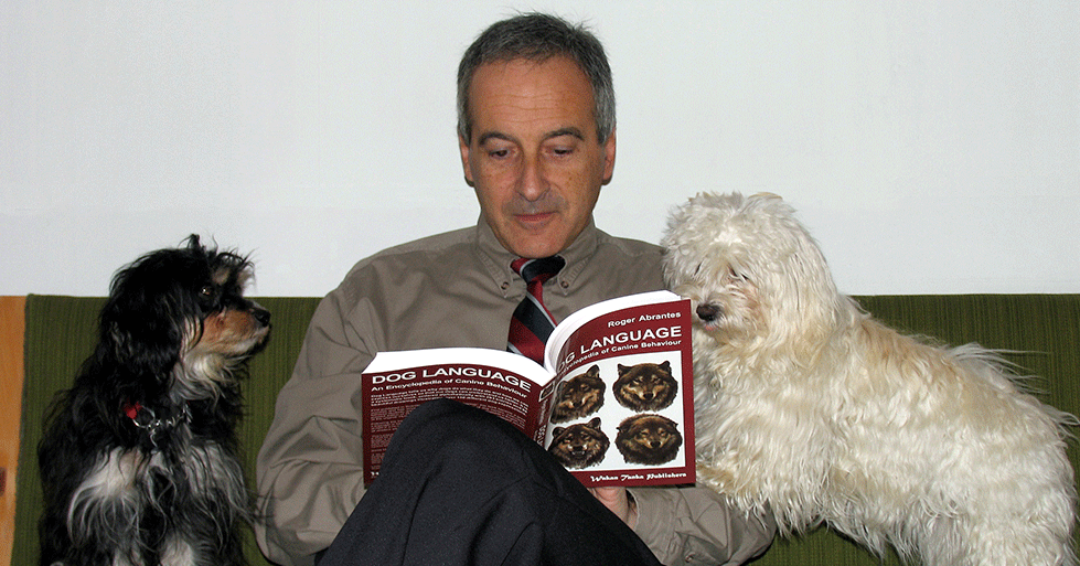 Roger Abrantes reading with dogs