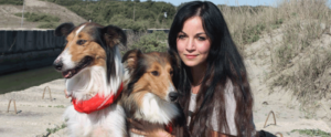 Dog Behavior Online Courses (Claudia And The Dogs)