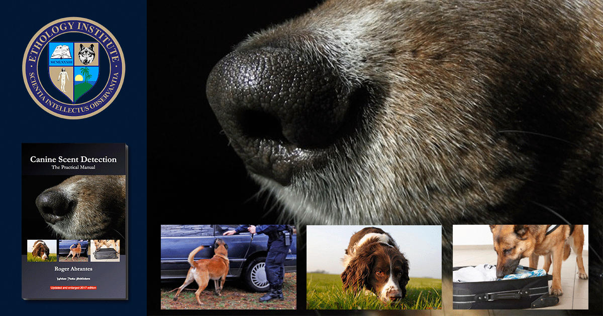 CanineScentDetection