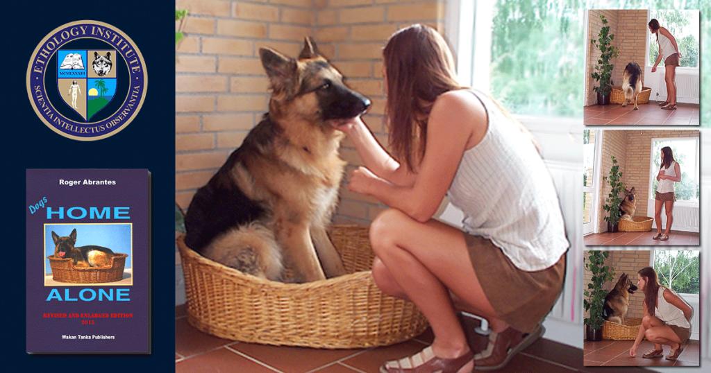 DogsHomeAlone4-1024x538