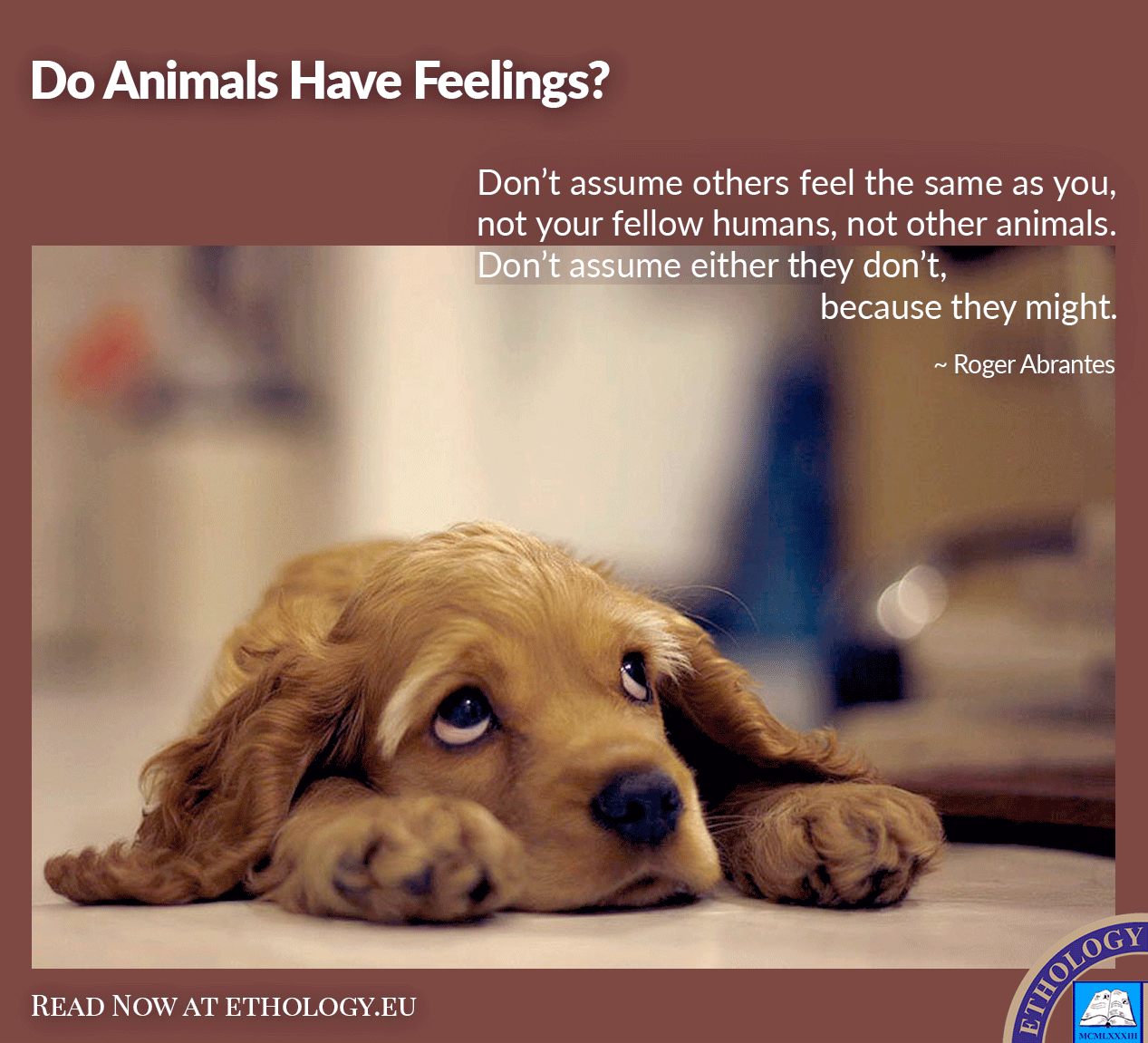 Do Animals Have Feelings?