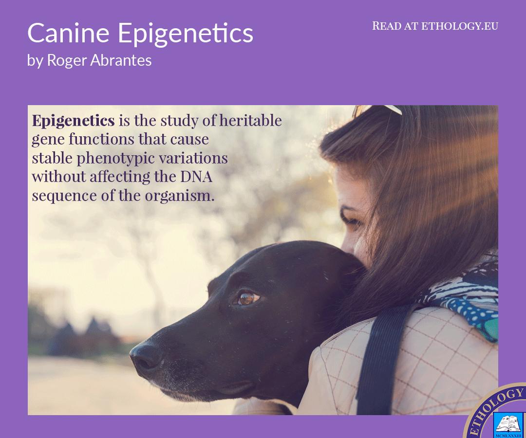 Canine-Epigenetics