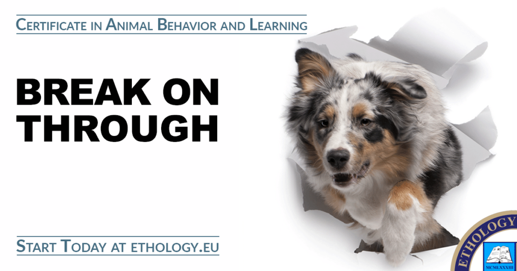 Certificate in Animal Behavior and Learning