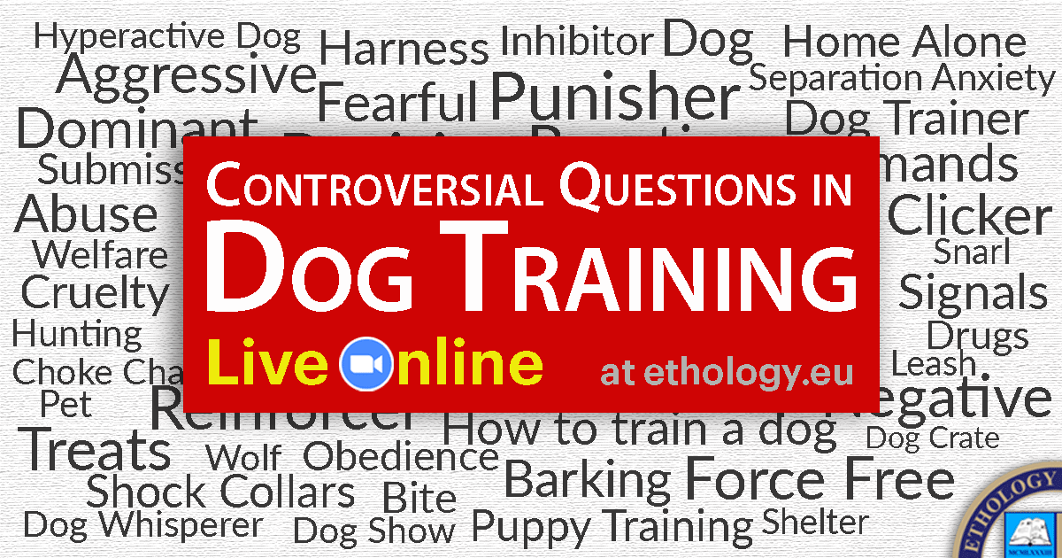 Controversial Questions In Dog Training